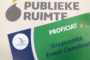 10.000 euro voor meer groen en een nieuwe speelplek in onze straat